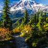 3376  G Rainier and Trail Sharp V