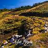 2480  G Trail in Berkley Park