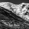 2450  G Rainier and First Burroughs Trail BW