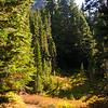 3152  G Pinnacle Peak and Trail V