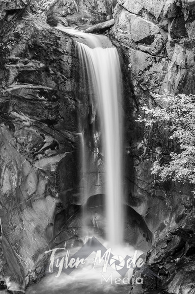 3552  G Christine Falls Sharp BW V