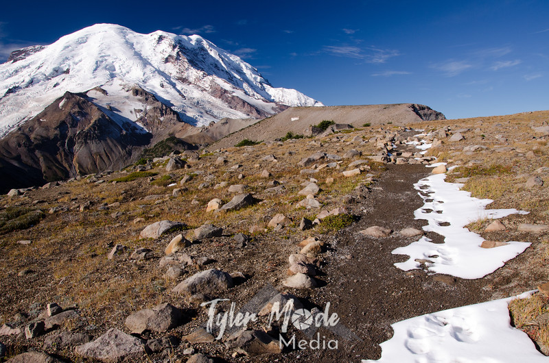 2355  G Rainier First Burroughs Snowy Trail