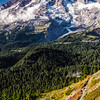 3364  G Rainier and Trail V