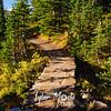 2248  G Trail Sun