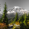 3379  G Rainier Selective Color