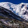 2449  G Rainier and First Burroughs Trail Sharp