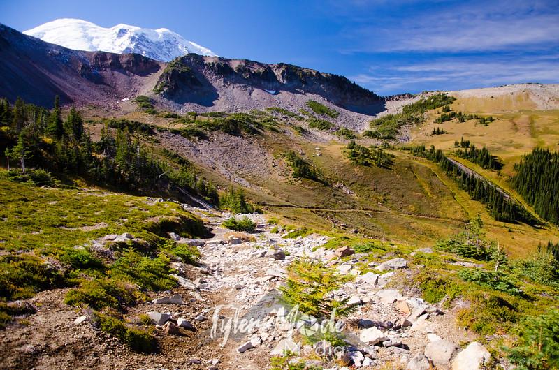 2524  G Rainier and Trail