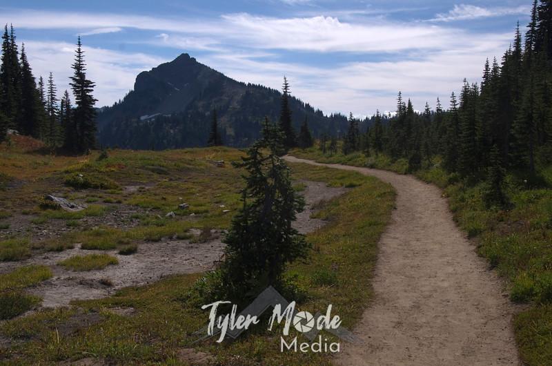 311  G Naches Peak Trail View South