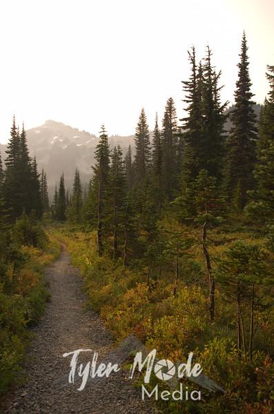 197  G Trail South V