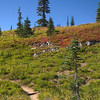 352  G Naches Trail and Fall Color V