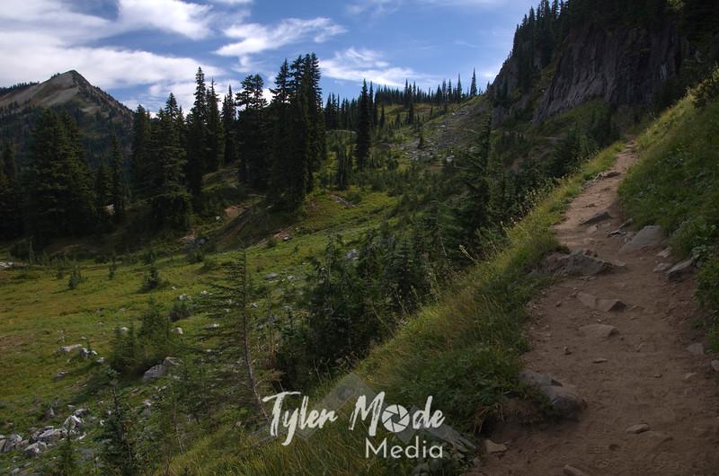 290  G Naches Peak Trail View South