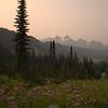 98  G Smoky Paradise Valley and Tree V