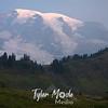 50  G Smoky Rainier