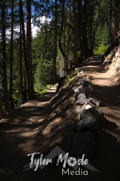 1484  G Trail Switchback and Rainier V