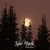 1339  G Harvest Moon at Sunrise