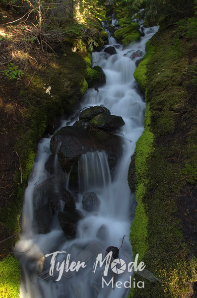 1381  G Small Creek V