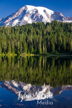 346  G Rainier Reflections Lake Deer V