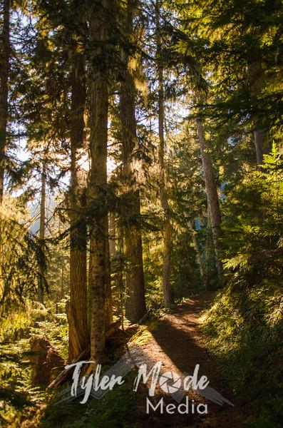 68  G Trail Sun V