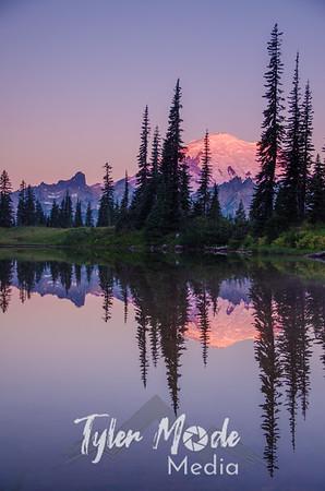 285  G Rainier Morning Upper Tipsoo Lake V