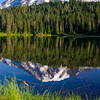 351  G Rainier Reflections Lake Deer V