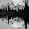 313  G Rainier Morning Upper Tipsoo Lake BW V