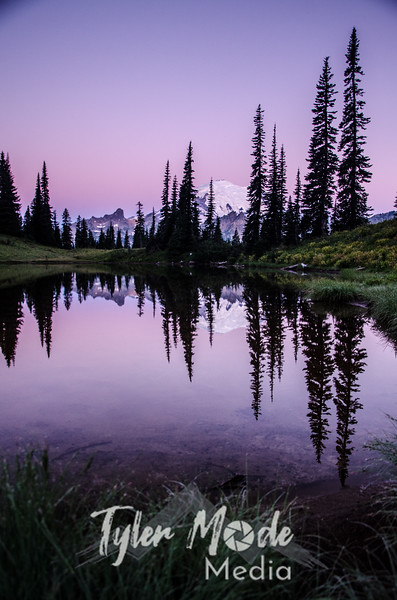 273  G Rainier Morning Upper Tipsoo Lake V