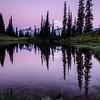 273  G Rainier Morning Upper Tipsoo Lake V