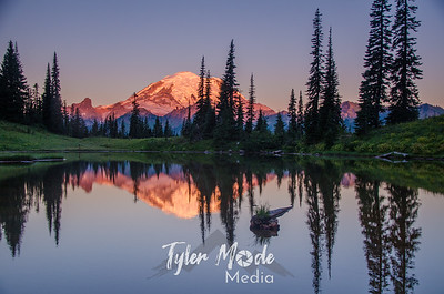 303  G Rainier Morning Upper Tipsoo Lake