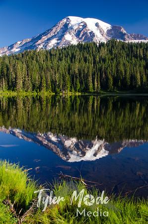 345  G Rainier Reflections Lake Deer V