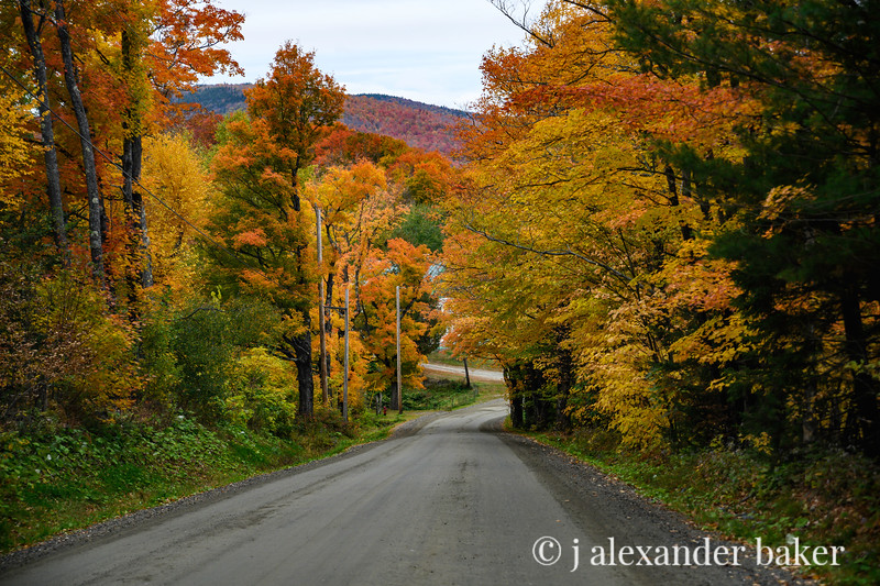 Autumn Road, VT
