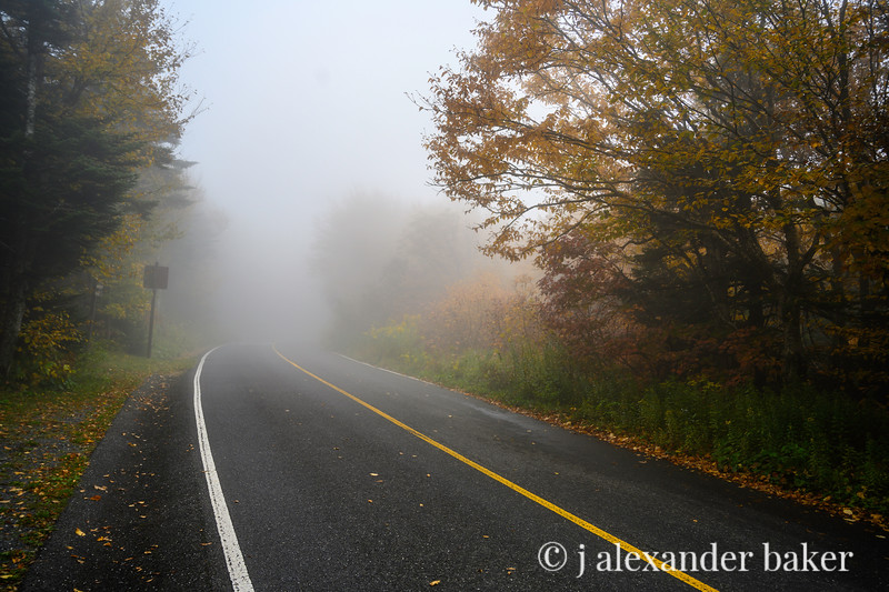 Into the Mist, Mt. Greylock, North Adams, MA