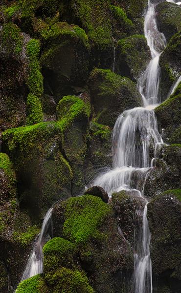 Ramona Falls and Mt Hood