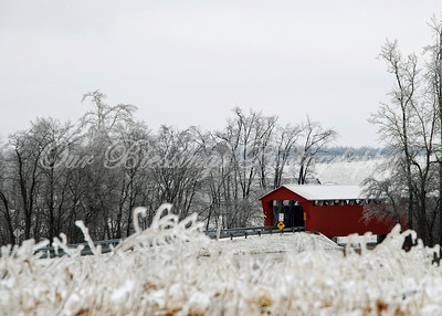 McCaulley covered bridge after the ice storm