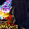 October2012-09126065-Edit