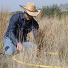 NRCS employee works on grass inventory.