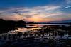 mooselook causeway sunset_2711