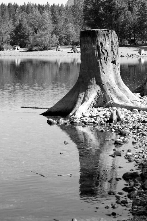Rattlesnake Lake-Sleeping Giants