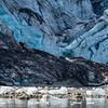Ice chips from Lamplugh Glacier, Galacier Bay National Park, Alaska.