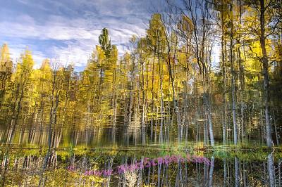 Sylvania Wilderness, Crooked Lake Reflection.