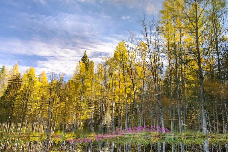 Sylvania Wilderness reflections.