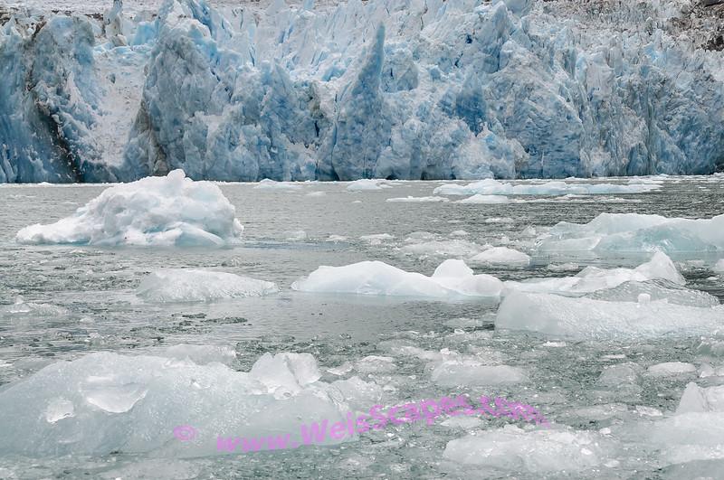 Weaving a path thru the ice of Dawe's Galcier.