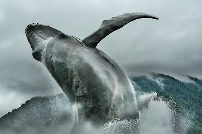 Life size whale fountain, Juneau AK.