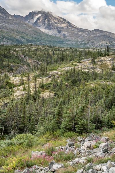 Klondike Highway North of Skagway Alaska in the White Pass area.