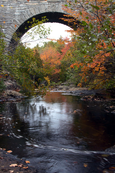 Below Duck Brook Bridge, Acadia ME