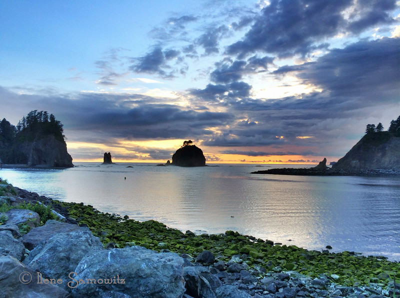 LaPush, Washington. From the land of Twilight.