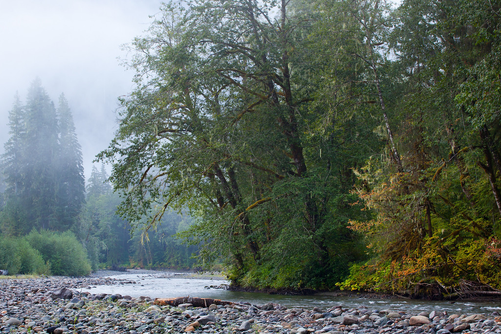 Early Fall on the Stillaguamish