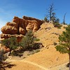 Photo from  the Arches trail