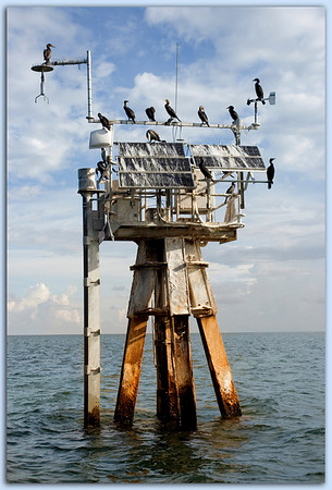 Marker No.2 in the Florida Bay (symbol not visible from this vantage point).<br /> Prickly devices installed to discourage birds along the top of the structure do not seem to deter cormorants in the slightest. Just a lovely, summer morning to gather on this oceanic bird perch.