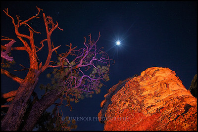 Night of Winter Equinox. in Red Rock, Nevada.