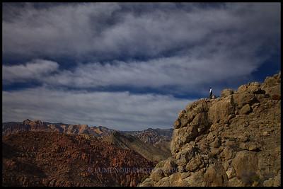 Above Kraft Mountain.